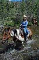 Colorado Adventures / Wilderness Aware Rafting in Buena Vista, CO