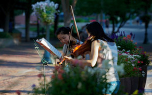 two female violinists play classical music in street performance surrounded by flowers
